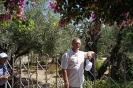 Израиль 2014_32